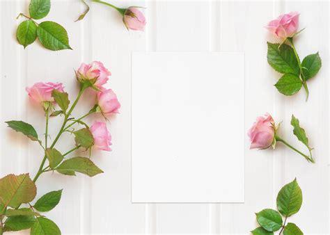 wedding card mockup  pink roses  mockup