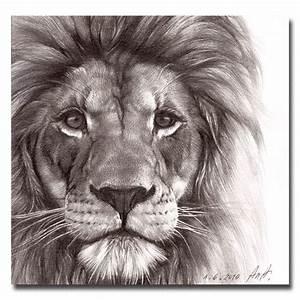 Big Cat Lion Prtrait Drawing Face Print 7''x7''. $21.00 ...
