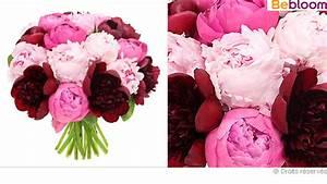 Langage Des Fleurs Pivoine : pivoine ~ Melissatoandfro.com Idées de Décoration
