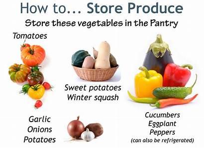 Fresh Storage Vegetables Produce Pantry Smart Fridge