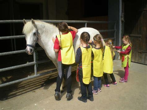 Sitemap  Herzlich Willkommen Auf Unserem Pferdehof Memmel