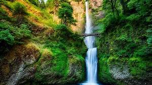 Oregon, Usa, Waterfall, River, Stream, Forest, Trees, Bridge, Rock