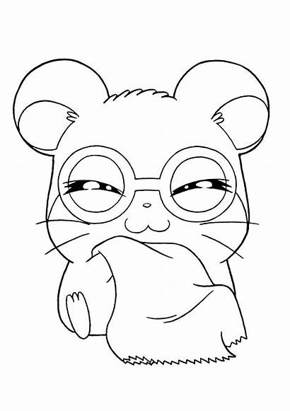 Coloring Pages Hamtaro Colouring Picgifs Rock Cartoons