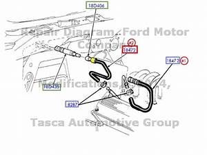 Wiring Diagram Database  2001 Ford Expedition Heater Hose Diagram
