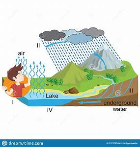 Physics - Water Cycle  The Journey Of Water Stock Vector