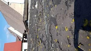 Dachlack Für Dachpappe : dach bitumen streichen dach streichen dach bitumen streichen naturalsupplementsforanxiety ~ Orissabook.com Haus und Dekorationen