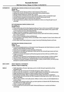 product manager sample resume senior solutions consultant resume samples velvet jobs