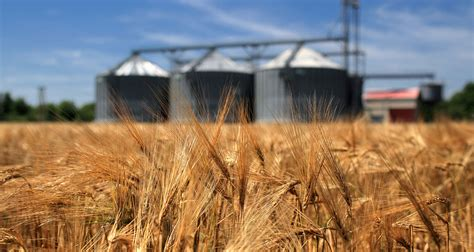 post  eu biofuel policy wont change  game