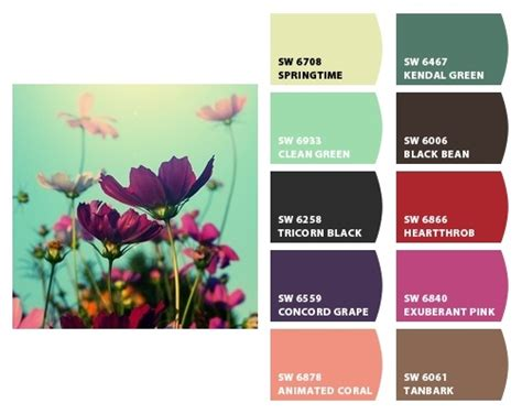 188 best images about colorsnap system for painting on