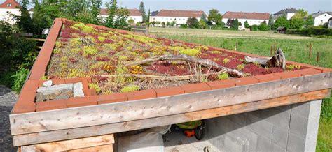 Daecher Begruenen Einfach Und Wirkungsvoll by Windschiefes Dach Hingucker F 252 R Dein Bauwerk
