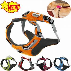 2017 new reflective dog harness accessories pet dog With dog training accessories