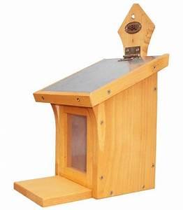 Eichhörnchen Aus Holz : habau futterhaus eichh rnchen b t h 16 19 5 28 5 cm online kaufen otto ~ Orissabook.com Haus und Dekorationen