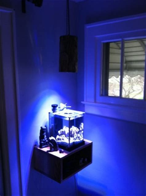 pico reef led lighting pico reef aquarium
