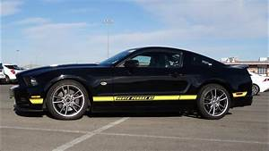 Hertz Penske Racing GT Mustang ~ 5.0 Mustangs 6 of them For Sale - YouTube