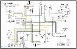 Bmw E36 Tail Light Wiring Diagram  With Images