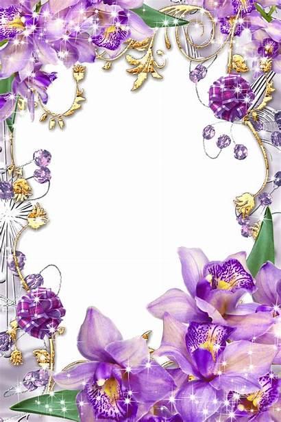 Border Purple Frames Frame Clipart Borders Transparent