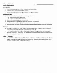 Ib Biology Study Guide Name  1 2 Ultrastructure Of Cells