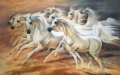 Horse Horses Seven Wallpapers Paint Painting Resolution