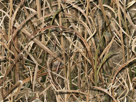 duck blind camo new pattern from mossy oak shadow grass blades victory