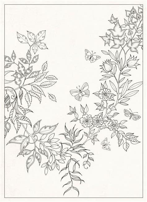 secret garden  cartoes postais johanna basford