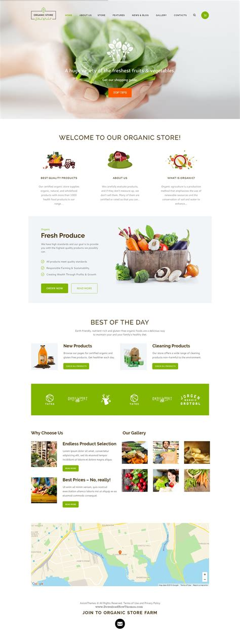 organic store organic food eco products theme gt organic store is a colorful design perfectly