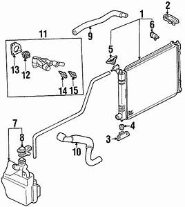 1997 Ford Escort Engine Coolant Thermostat  Cooling  Dohc