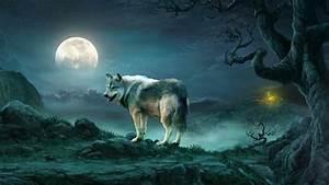 Wolf Under The Full Moon - Fantasy Art Wallpaper ...
