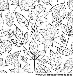 Adult Coloring Pages Leaves