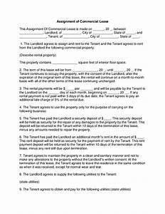 consent to assignment of contract sample format written term papers
