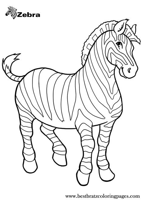 printable zebra coloring pages  kids colorbook