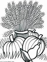Coloring Fall Pages Printable Adult Adults Harvest Thanksgiving Autumn Cornucopia Flowers Festival Sheets Wheat Google Leaves Thecoloringbarn Drawing Colouring Getdrawings sketch template