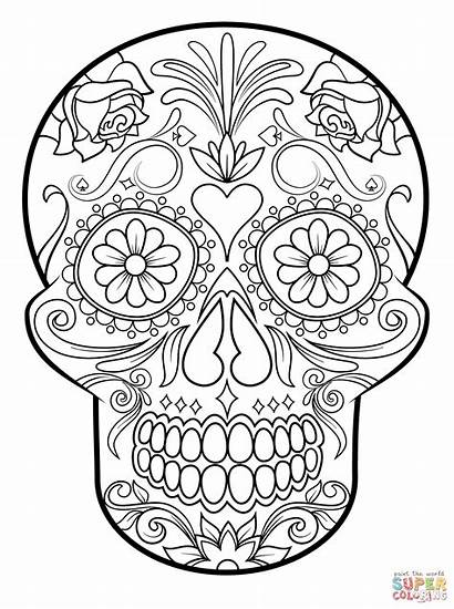 Skull Coloring Sugar Pages Flower