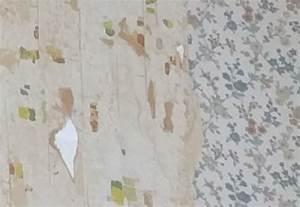 Peut On Peindre Sur De La Tapisserie : jusqu 39 o enlever le papier peint pour pose peinture 5 messages ~ Nature-et-papiers.com Idées de Décoration