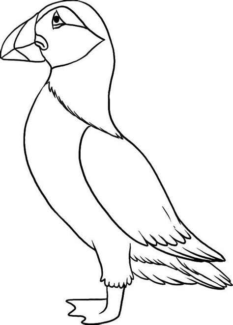 Kleurplaat Papegaaiduiker by Top 10 Puffin Coloring Pages For Toddlers Coloring Pages