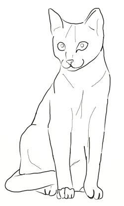 draw  cat draw step  step
