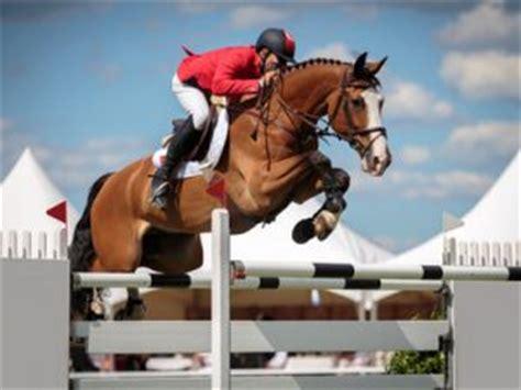 Wie Viel Kostet Ein Pferd? Woran Man Alles Denken Sollte