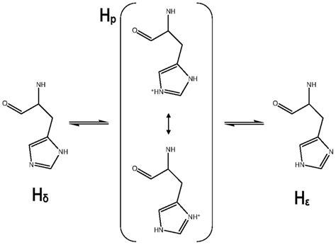 Protonation States Of The Histidine.