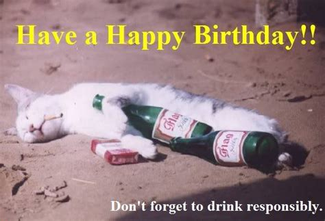 funny birthday quotes drinking funny funny cat