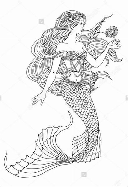 Mermaid Mermaids Drawings Drawing Coloring Easy Flower