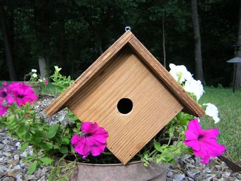 build a wren bird house with free plans craftybirds com