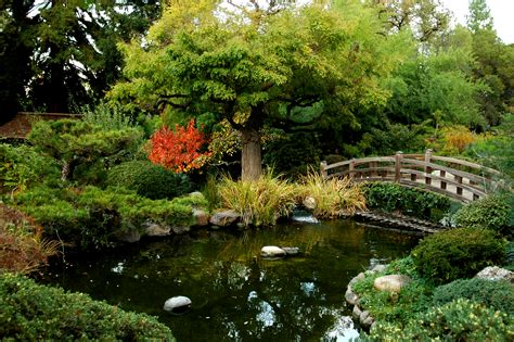 landscape with pond ponds bloggerluv com