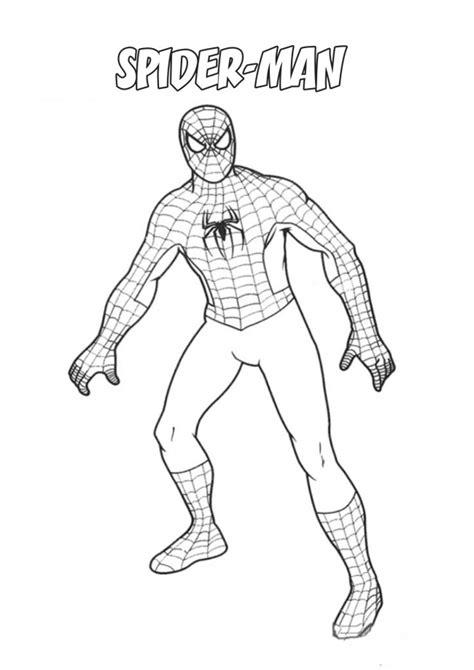 disegni maschili per bambini spider da colorare