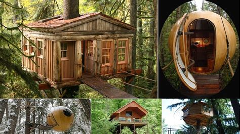 The 8 Best Treehouse Hotels In Usa  Home Design, Garden
