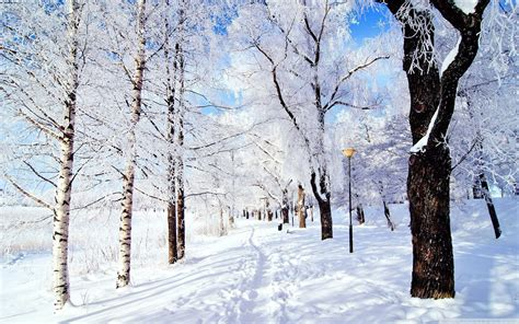 Cool Winter Background by Winter Desktop Background 54 Images