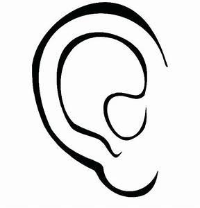 Human Ear Drawing
