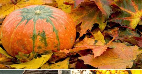 tavole dei colori sulle nostre tavole i colori allegri e le propriet 224 dei