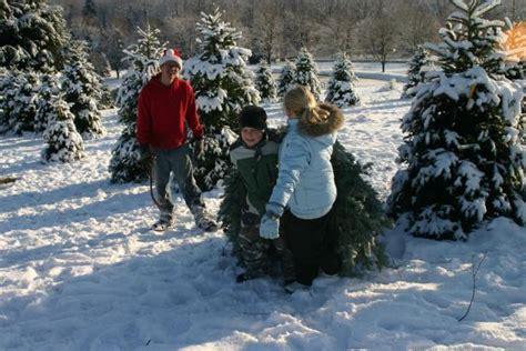 christmas tree farms pennsylvania where christmas comes from gac 5061