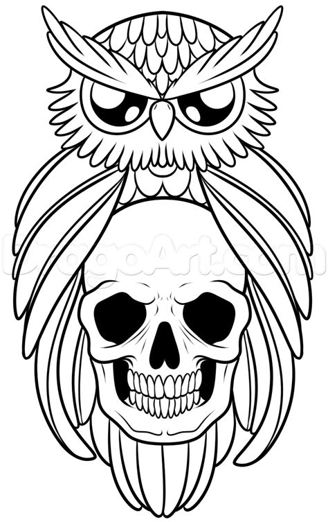 owl outline drawing how to draw an owl and skull step by step tattoos