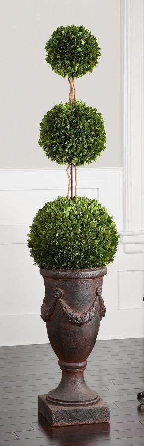 boxwood topiary trees the tiered boxwood pruned into a three tier poodle form 1773