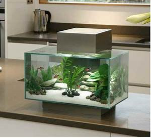 Aquarium L Form : 6 gallon pewter edge aquarium by hagen fluval nice ~ Sanjose-hotels-ca.com Haus und Dekorationen